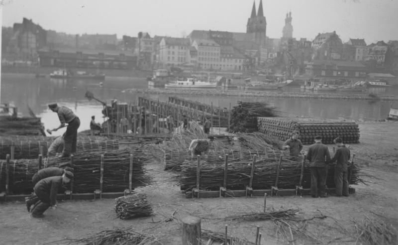 An der Lehrbaustelle für Wasserbauwerker in Koblenz arbeiten Auszubildende. Man erkennt verschiedene Phasen der Herstellung, im Hintergrund die fertigen Faschinen. (1956)