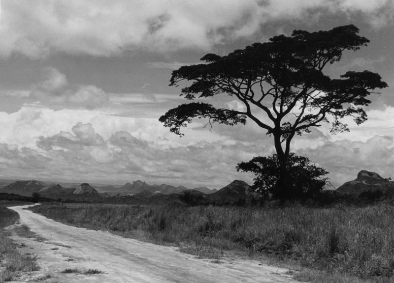 Rhodesien, heute Simbabwe, Südafrika, aus der Serie 'Die Welt des Tabaks', Foto: Ehrhardt, Alfred (1956)