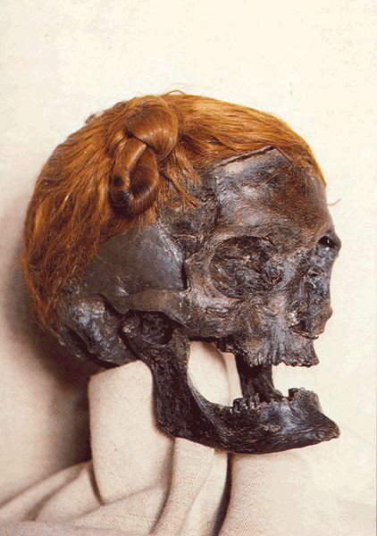 Kopf der Moorleiche aus dem Moor bei Osterby