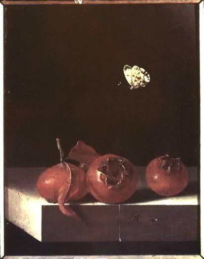 """""""Mispeln und Schmetterling"""", Foto (1952), Coorte, S. Adriaan (Maler, 1698) © Bildarchiv Foto Marburg"""