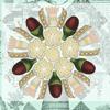 Collage Coding da Vinci Plantala