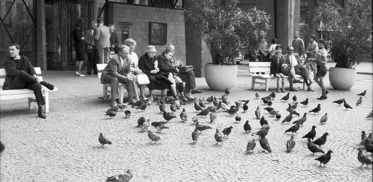 Fotografien für Köln und die Welt. Die Geschichte des Rheinischen Bildarchivs